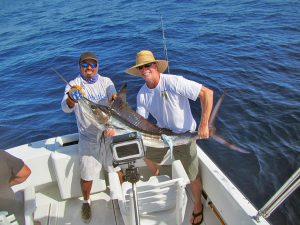 Striped Marlin fished in Cabo San Lucas on 8/30/19