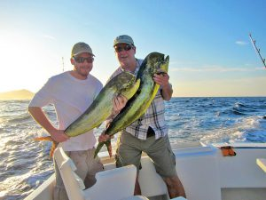 Dorado fished in Cabo San Lucas on 9/16/19