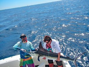 Striped Marlin fished in Cabo San Lucas on 10/29/19