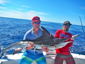 Striped Marlin fished in Cabo San Lucas on 11/8/19
