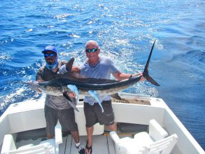 Striped Marlin fished in Cabo San Lucas on 11/10/19