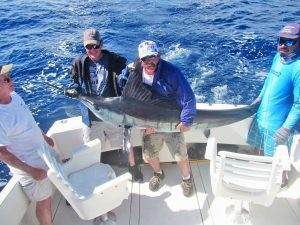 Striped Marlin fished in Cabo San Lucas on 11/24/19