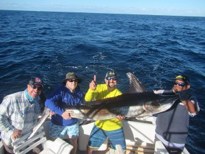 Striped Marlin fished in Cabo San Lucas on 1/2/20
