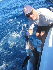 120 lb Striped Marlin fished in Cabo San Lucas on 1/29/20