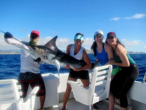 100 and 120 lb Striped Marlin fished in Cabo San Lucas on 2/3/20