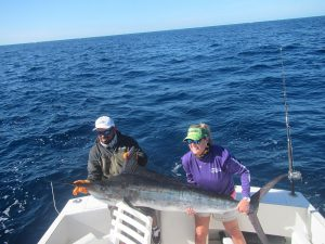 120 lb Striped Marlin fished in Cabo San Lucas on 2/5/20