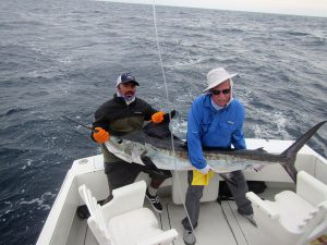 120 and 130 lb Striped Marlin fished in Cabo San Lucas on 2/11/20