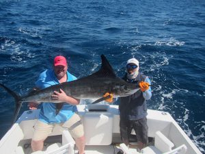 140 lb Striped Marlin fished in Cabo San Lucas on 2/18/20