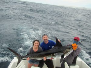 120 and 140 lb Striped Marlin fished in Cabo San Lucas on 3/15/20