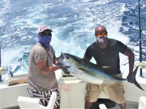 Catch and release of 120 lb Striped Marlin on 9/13/20