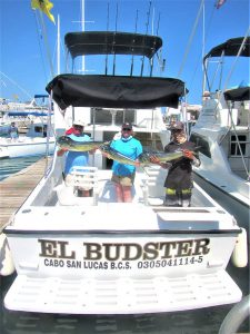 Fishing ten DORADO in Cabo San Lucas on 9/28/20