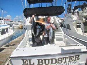 Caught 3 Yellowfin Tuna and 4 Dorado on 10/14/20