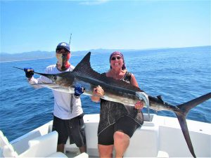 Catch & release 120 lb Striped Marlin in Cabo San Lucas on 11/2/20