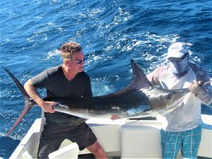 Catch & release 140 lb Striped Marlin in Cabo San Lucas on 12/5/20