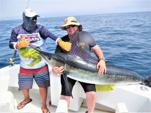 Caught  and released 3 Striped Marlin, 100, 120 and 140 lb, in Cabo San Lucas on 4/6/21