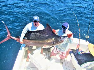 Catch & release 100 LB. Pacific Sailfish and 120 LB. Striped Marlin in Cabo San Lucas on 5/13/2021