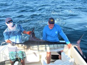 Catch & release 140 LB. Striped Marlin in Cabo San Lucas on 5/25/2021