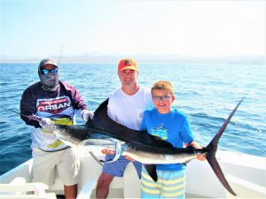 Catch and release 100 pound Striped Marlin in Cabo San Lucas on 7/31/21