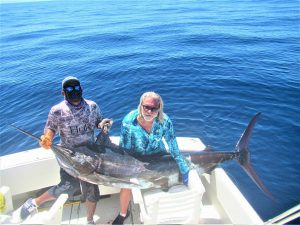 Catch & release 300 LB Blue Marlin in Cabo San Lucas on 9/6/2021